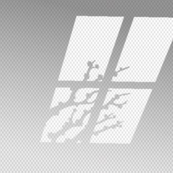 Transparant schaduwen-overlay-effect met herfsttakken