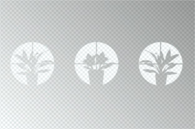 Transparant schaduwen-overlay-effect
