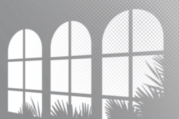 Transparante schaduwen bedekken het monochrome effect