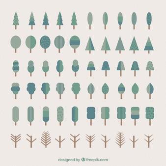 Tree collectie