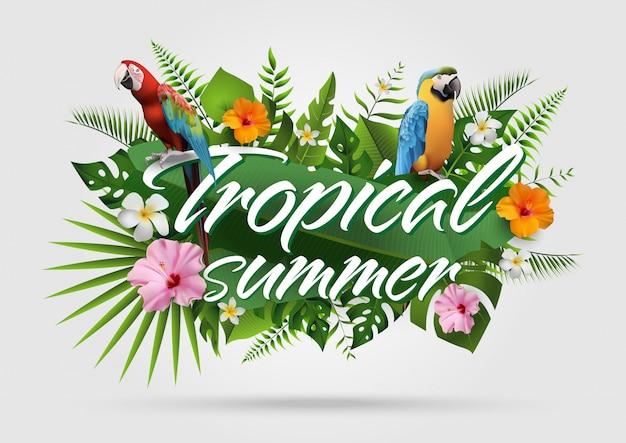 Trendy zomer tropische achtergrond25