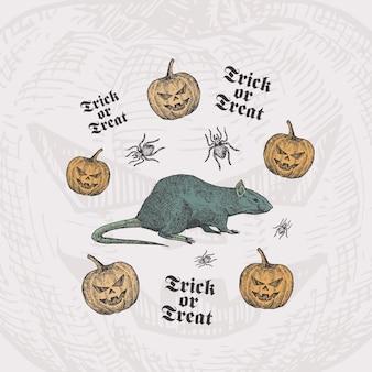 Trick or treat halloween-kaartsjabloon met rat, pompoenen en spinnen