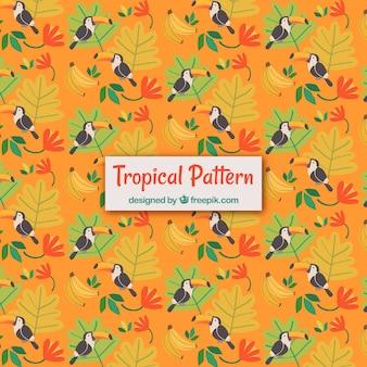 Tropisch de zomerpatroon met toekannen en installaties