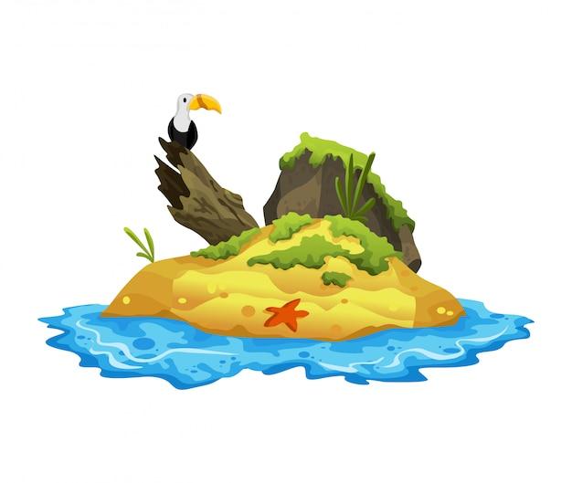 Tropisch eiland. tropische kust met gier, zeesterren en zeegolven. zomer landschap van het tropische eiland. rust in het resort.