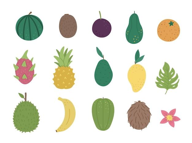Tropisch fruit en bessen illustraties