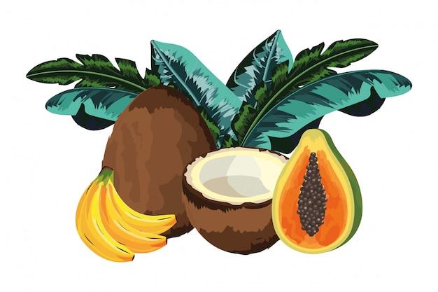 Tropisch fruitbeeldverhaal