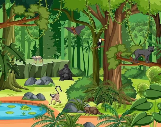 Tropisch regenwoudtafereel met verschillende wilde dieren Premium Vector