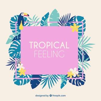 Tropisch verlofkader