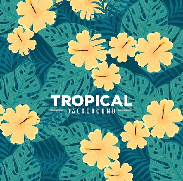 Tropische achtergrond, bloemen gele kleur en tropische planten, decoratie met bloemen en tropische bladeren