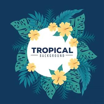 Tropische achtergrond, frame van bloemen gele kleur met tropische bladeren, decoratie met bloemen en tropische bladeren