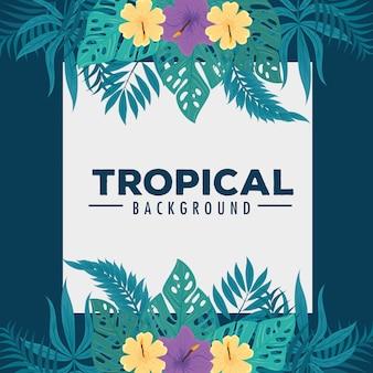 Tropische achtergrond, frame van bloemen paarse en gele kleur met tropische bladeren, decoratie met bloemen en tropische bladeren