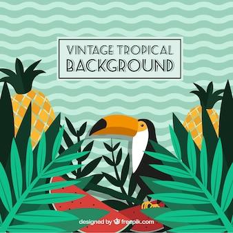 Tropische achtergrond in vintage stijl