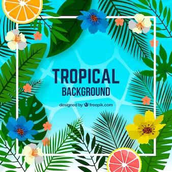 Tropische achtergrond met planten en fruit