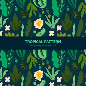 Tropische achtergrond met planten
