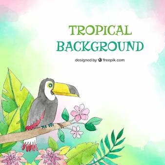 Tropische achtergrond met vogels en bladeren in aquarel stijl
