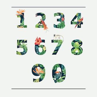 Tropische alfabet typografische zomer nummer met planten gebladerte