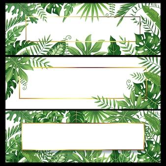 Tropische bladeren banners. exotische palmblad banner, natuurlijke kokospalmen tak frames en jungle planten achtergrond instellen