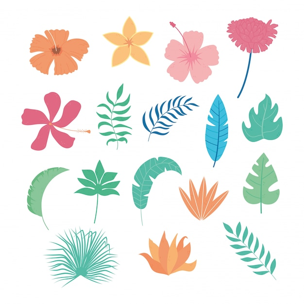 Tropische bladeren bloemen tak palm gebladerte vegetatie pictogrammen