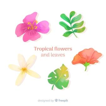 Tropische bladeren en bloemen
