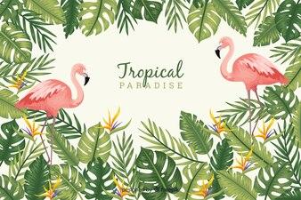 Tropische bladeren en vogels