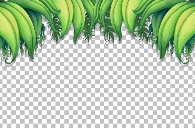Tropische bladeren frame sjabloon op transparante achtergrond