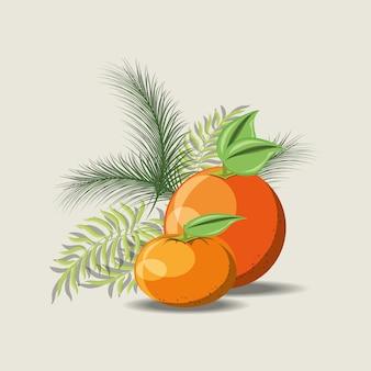 Tropische bladeren met sinaasappel en mandarijn