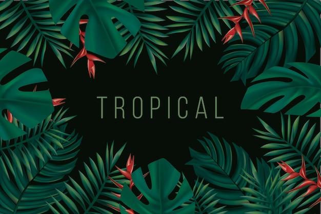Tropische bladerenachtergrond met tropisch woord