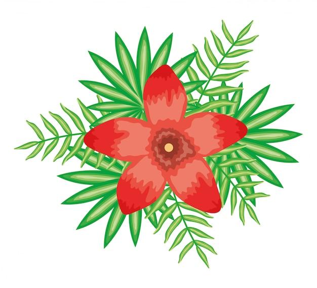 Tropische bloem en bladeren planten