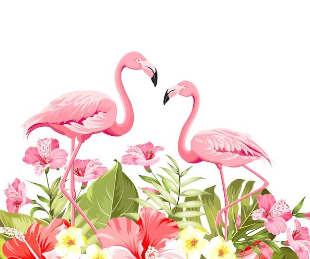 Tropische bloem en flamingo's op witte achtergrond. vector illustratie.