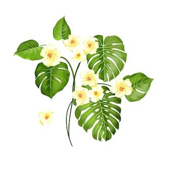 Tropische bloem en palm op witte achtergrond. vector illustratie.