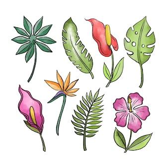 Tropische bloemen en bladeren pack