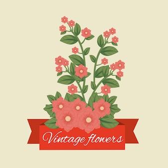Tropische bloemen planten met bladeren en lint