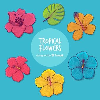 Tropische bloemencollectie