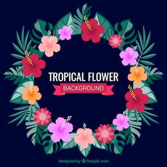 Tropische bloemenkransachtergrond