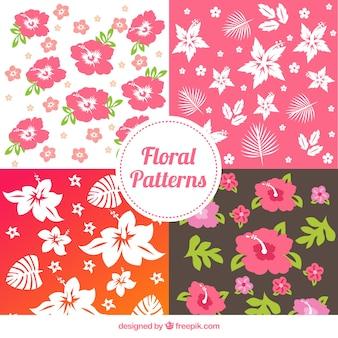 Tropische bloemenpatronen