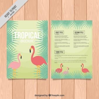Tropische brochure met flamingo