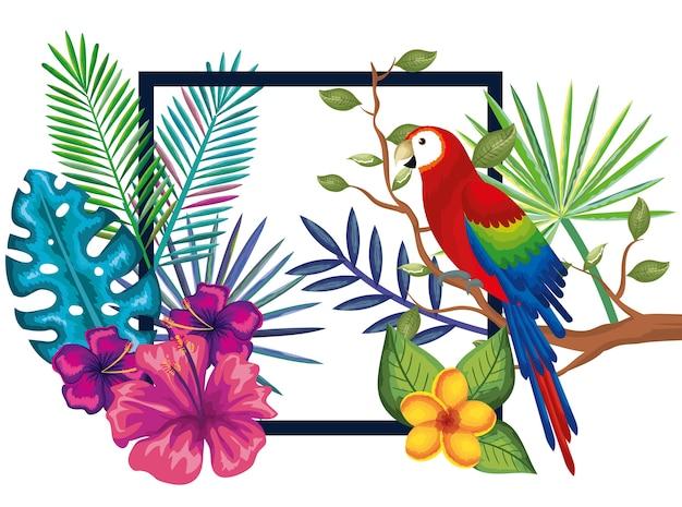 Tropische en exotische tuin met papegaai