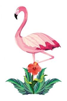 Tropische flamingo cartoon