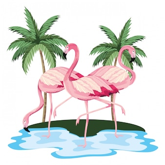 Tropische flamingo's cartoon