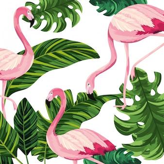 Tropische flamingo's cartoon