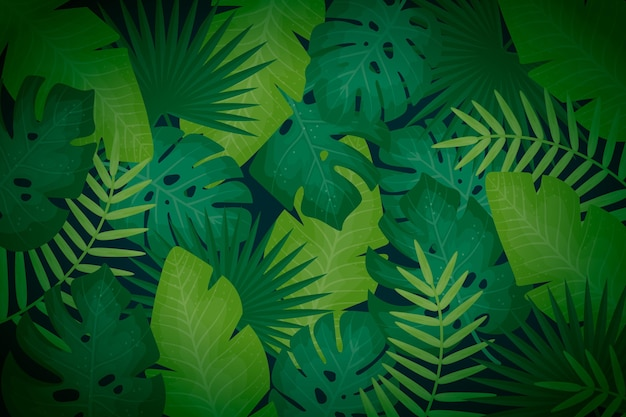 Tropische gebladerte achtergrond