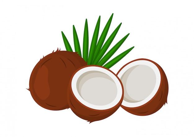 Tropische kokosnoten met bladeren