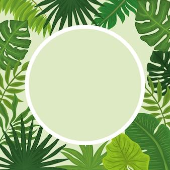 Tropische monstera-badge