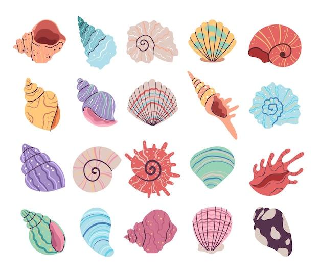 Tropische onderwater zeeschelp clam oesterschelpen set
