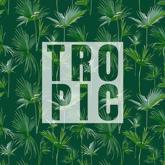Tropische palm bladeren exotische achtergrond