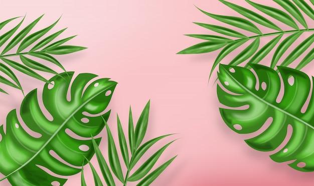 Tropische palmbladeren achtergrond