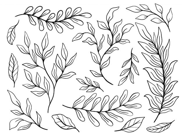 Tropische plant blad set. botanische bloemen element