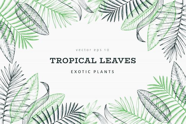 Tropische planten sjabloon