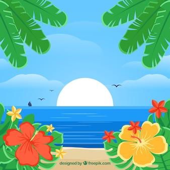 Tropische strandachtergrond met vegetatie