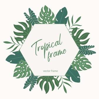 Tropische vector frame.